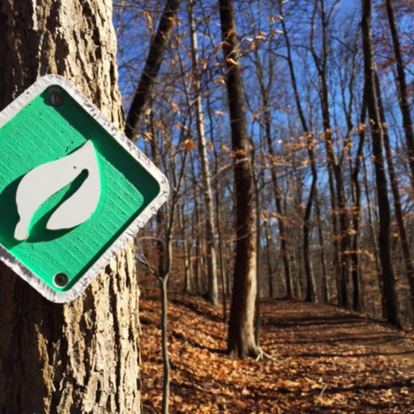 Cato Park Trail Run
